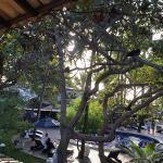 Foto de Quinta do Porto
