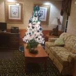 Vista Inn & Suites - Warner Robins Foto