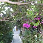 Anna Studios Amorgos Foto