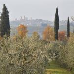 Photo de Agriturismo Il Vecchio Maneggio