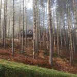 The Mast Farm Inn Foto