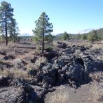 Sunset Crater Volcano National Monument in Nov