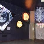 Фрагмент экспозиции «Следы Земной памяти» (зал 1)
