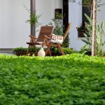 Patio -Jardin