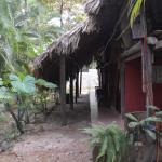 Yaxkin Hostel Foto