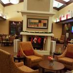 Hampton Inn & Suites Tampa - North Foto