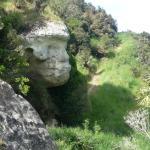 Te Ana Maori Rock Art Foto