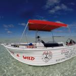 Clearest waters and bluest skies, Wet & Wild Aitutaki