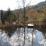 Teich neben Mas Ardevol