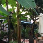 Astoria Garden Foto