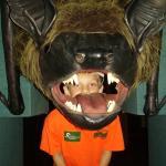 hear what a bat hears!