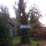 An example of the grounds' signage and lighting