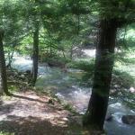 Creek shallow side