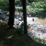 Shallow side of creek