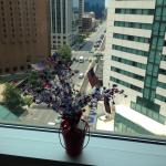 """View from room with """"our 4th of July Bouquet"""" in window"""