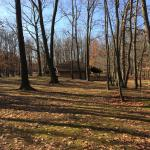 William Warren Park