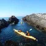 Explore the marine park