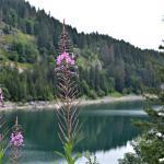 Photo of Lac de Tanay