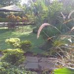 view of garen from terrace