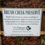 Photo de Brush Creek Falls