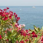 Photo of La Rosa dei Venti