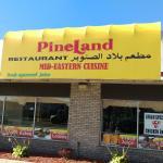 Pineland Westland