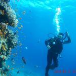 Adventure Spot Dahab Foto