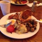 Check the breakfast yorkie...