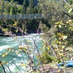 Kootenai Falls Swinging Bridge Foto