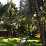 Jardim caminho para o Café da Manhã, sauna, academia e Piscina.