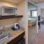 Holiday Inn Express Palatine-Arlington Hts Chicago NW-Suite