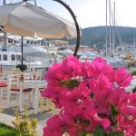 Sisus Otelin konumlandığı Dalyanda yat Limanı manzarası