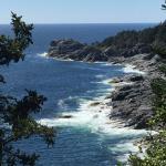 cliff view on Monhegan