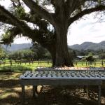 Pantrepant Farm Excursion