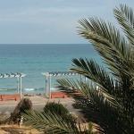 Hotel Flamingo Beach Foto