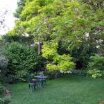relax in back garden