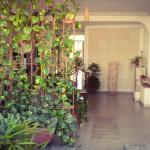 Hotel Careyes foto Rene  Ranachilanga Ortega