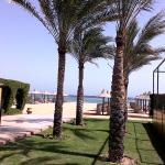 Bild från Club Magic Life Sharm el Sheikh Imperial