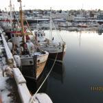 Hafnarfjorder fishing harbour.