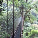 Uno de nuestro puentes colgantes.