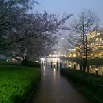 Photo de Kishamichi Promenade
