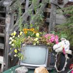 Photo de Dawson City River Hostel