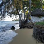 Photo de Iguana Hotel