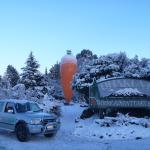 TCB at the Ohakune carrot
