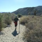 Coachella Valley Preserve