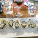 Beautifully presented oysters