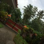 Foto de Green Villa Garden Home & Guest House