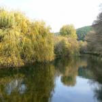 The beautiful River Cesse