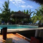 Pool from inside bar