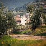 Agriturismo_Valpolicella_Corteforte
